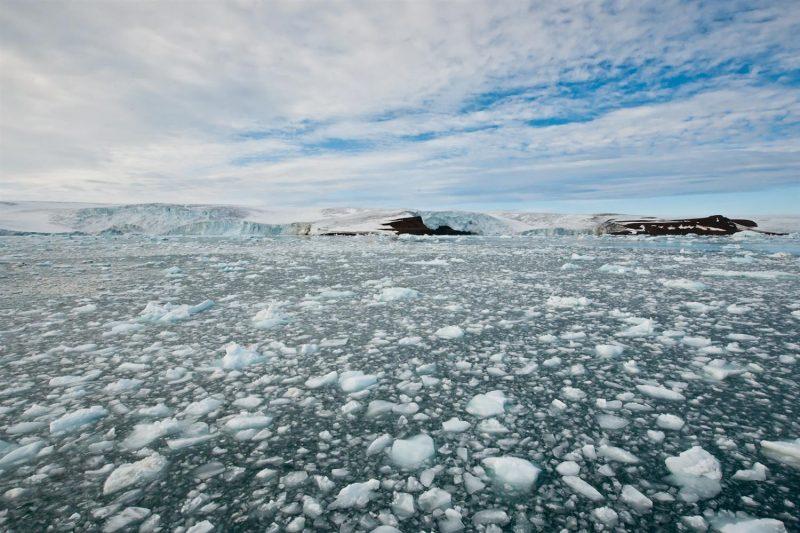 Эксперты предупредили об экологических проблемах в Арктике, возникших из-за коронавируса